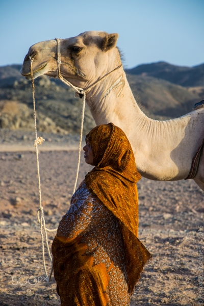 Desert Safari Tours in Marsa Alam
