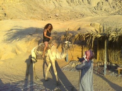 Camel Riding & Bedouin Dinner in Taba Trips