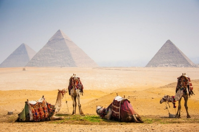 Cairo and Luxor Tours from Safaga Port