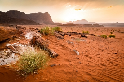 Petra and Wadi Rum Tours from Amman